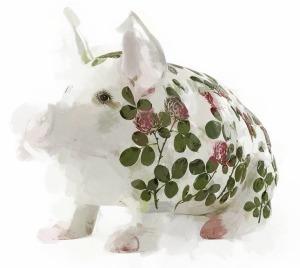 wemyss pig